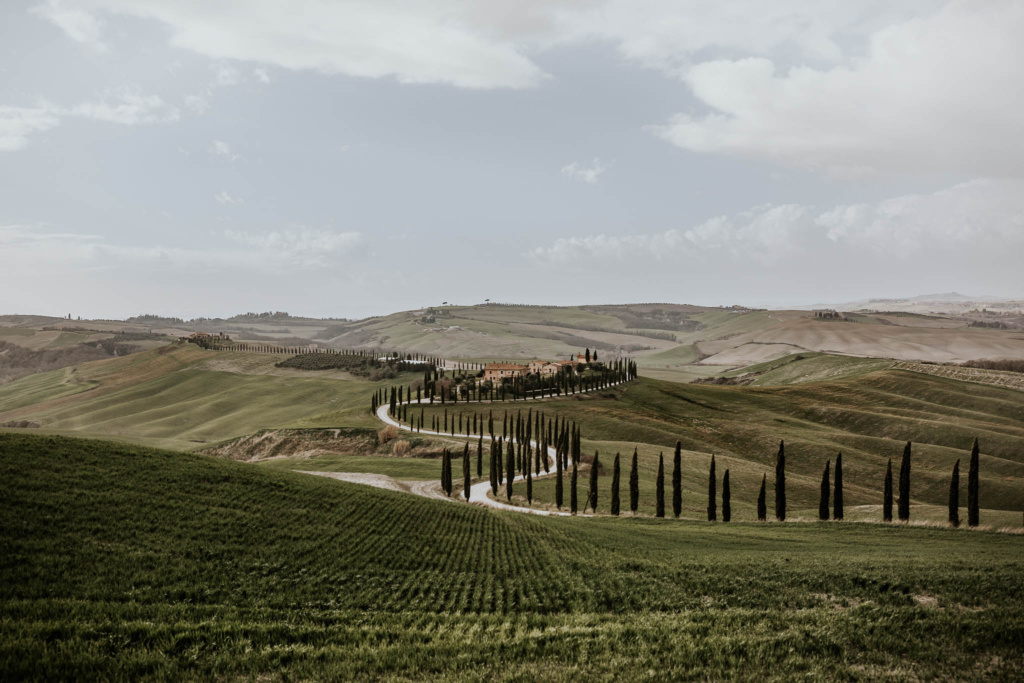 A winding tree-lined road through the green fields of Crete Senesi, Italy, in the late winter.